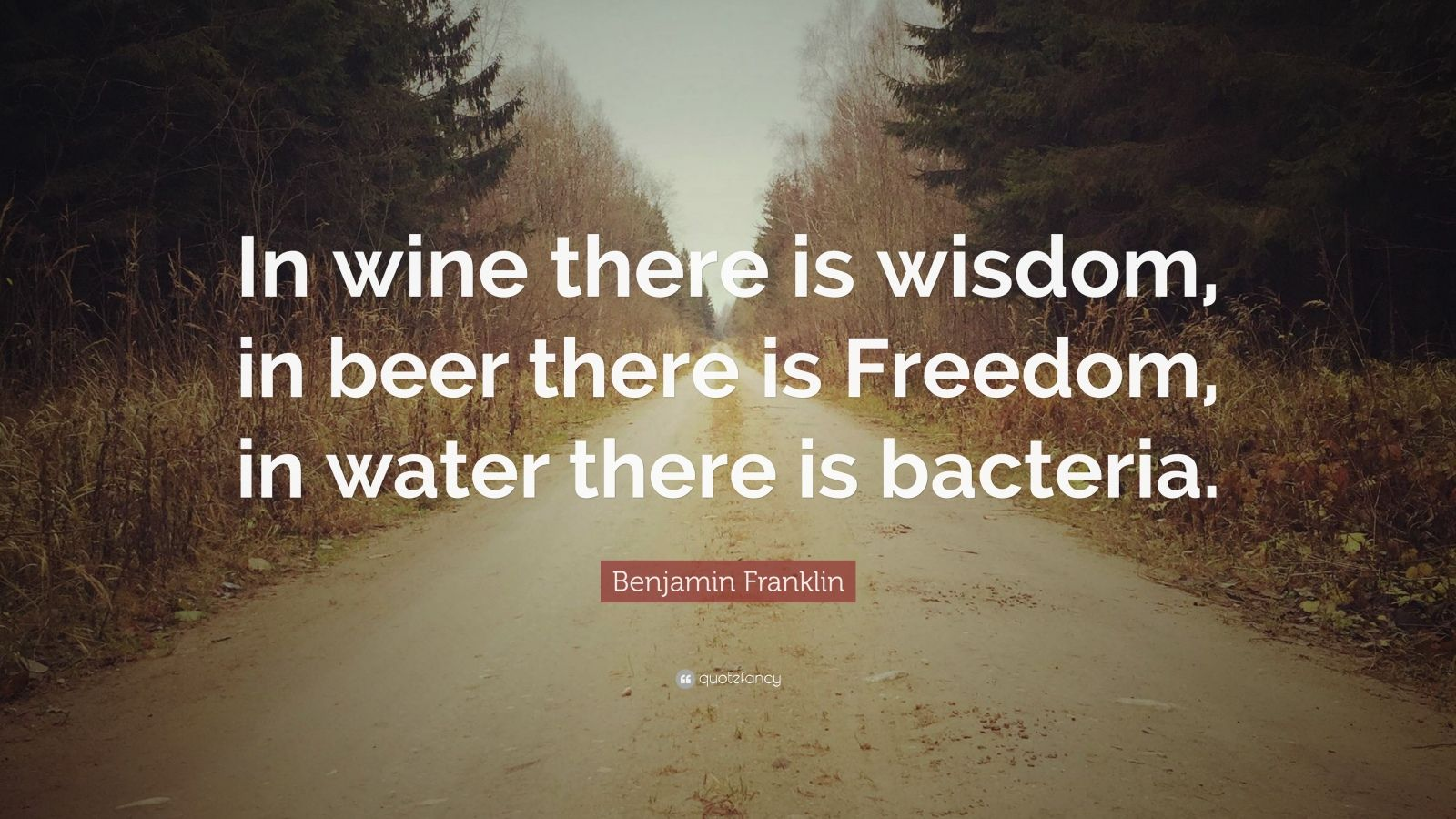 """Benjamin Franklin Quote: """"In wine there is wisdom, in beer there is Freedom, in water there is bacteria."""""""
