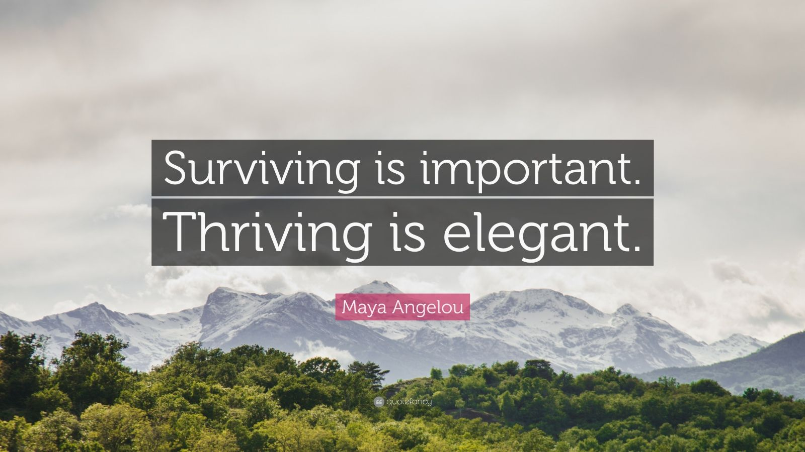 """Maya Angelou Quote: """"Surviving is important. Thriving is elegant."""""""