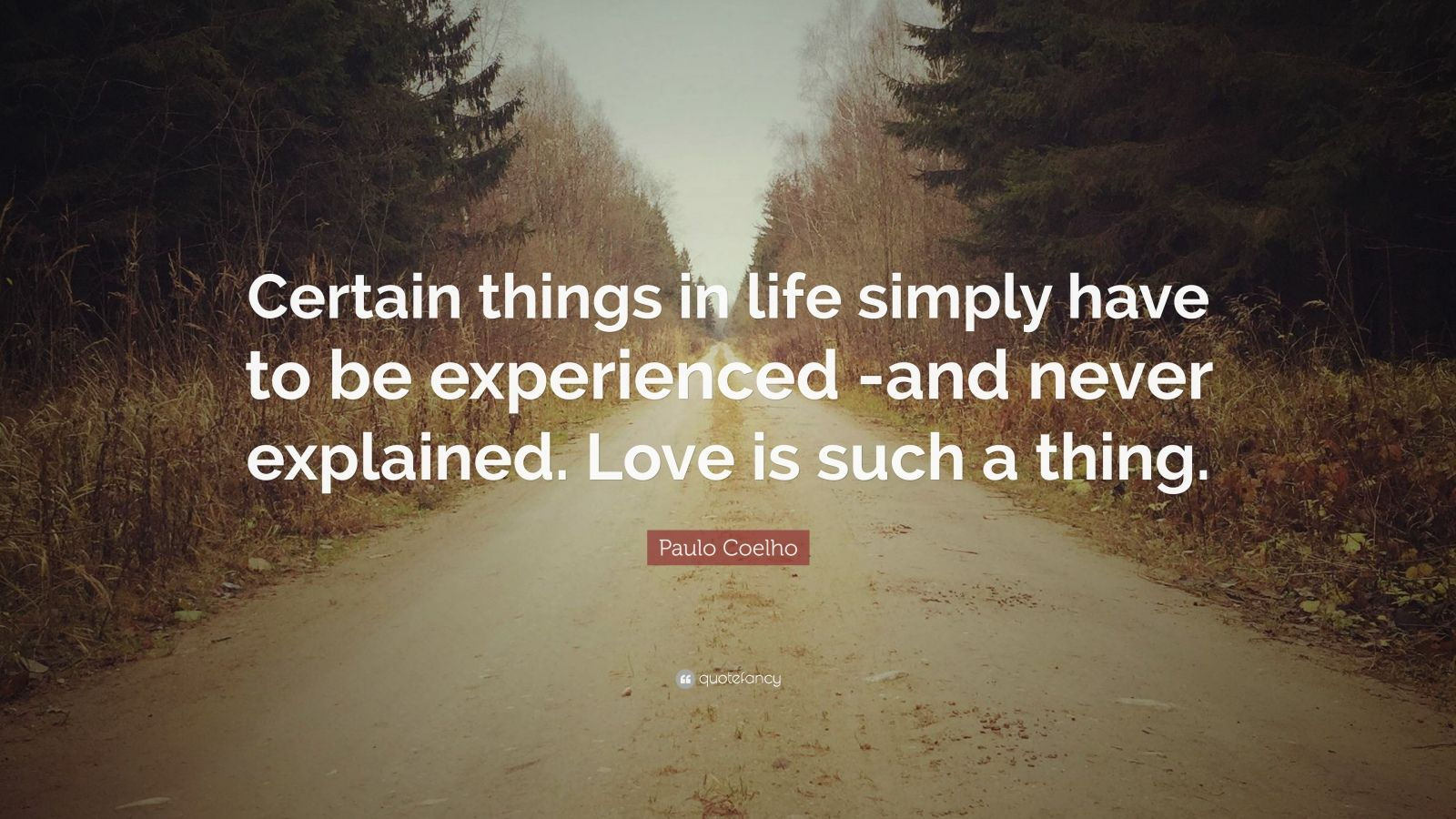 paulo coelho quote certain things in life simply have to
