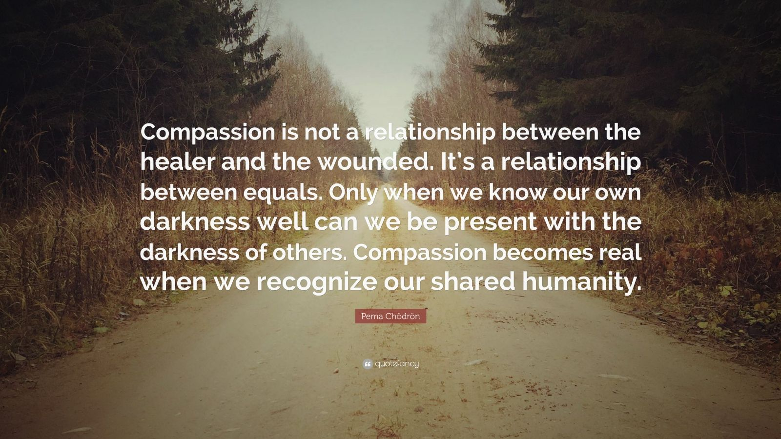 """Pema Chödrön Quote: """"Compassion is not a relationship between the healer and the wounded. It's a relationship between equals. Only when we know our own darkness well can we be present with the darkness of others. Compassion becomes real when we recognize our shared humanity."""""""
