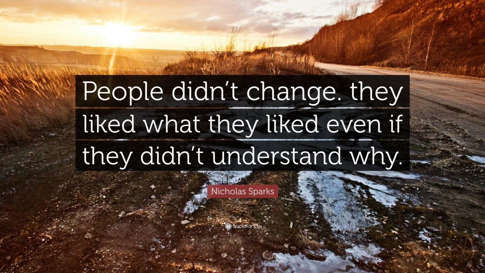 "Nicholas Sparks Quote: ""People didn't change. they liked what they liked even if they didn't understand why."""