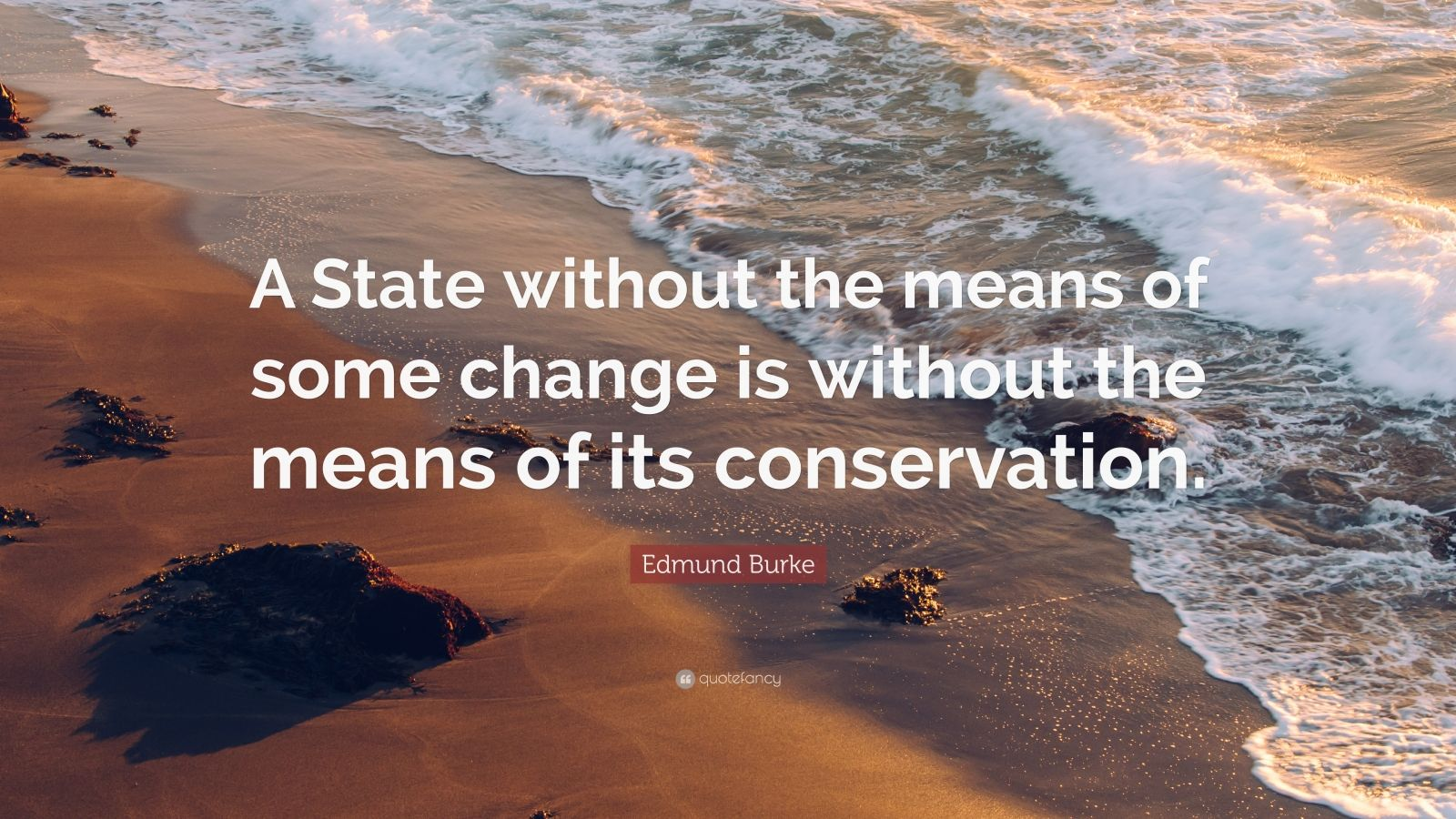 """Edmund Burke Quote: """"A State without the means of some change is without the means of its conservation."""""""