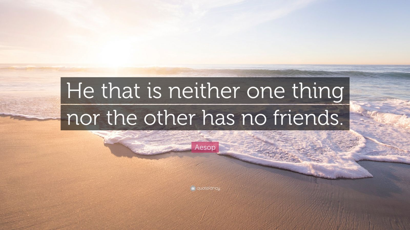 "Aesop Quote: ""He that is neither one thing nor the other has no friends."""