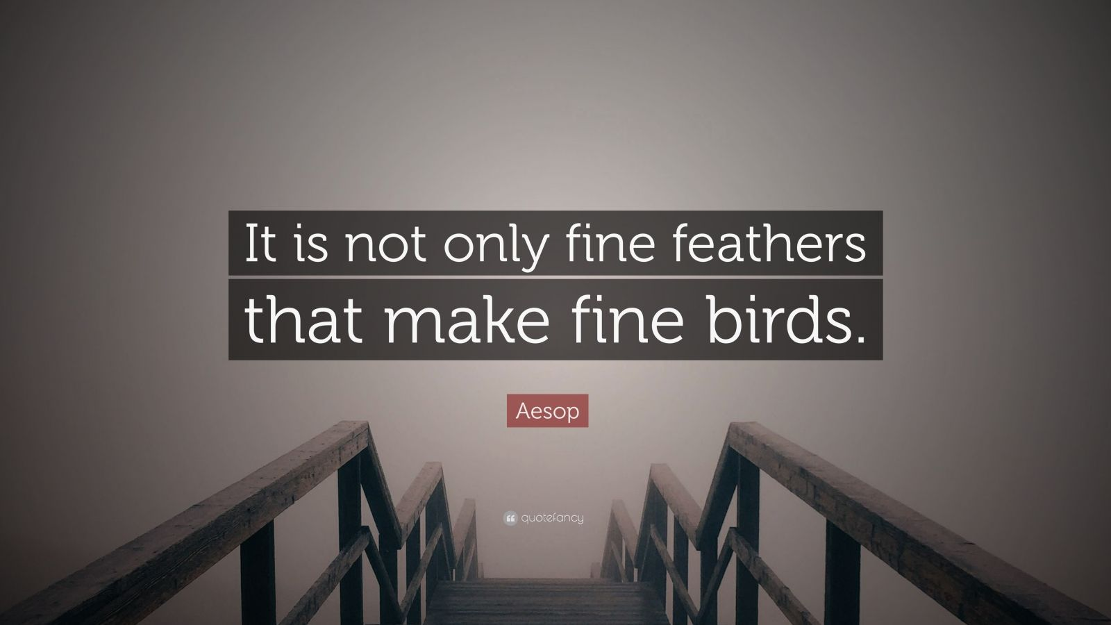 "Aesop Quote: ""It is not only fine feathers that make fine birds."""