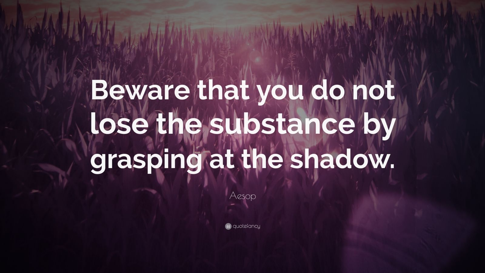 """Aesop Quote: """"Beware that you do not lose the substance by grasping at the shadow."""""""
