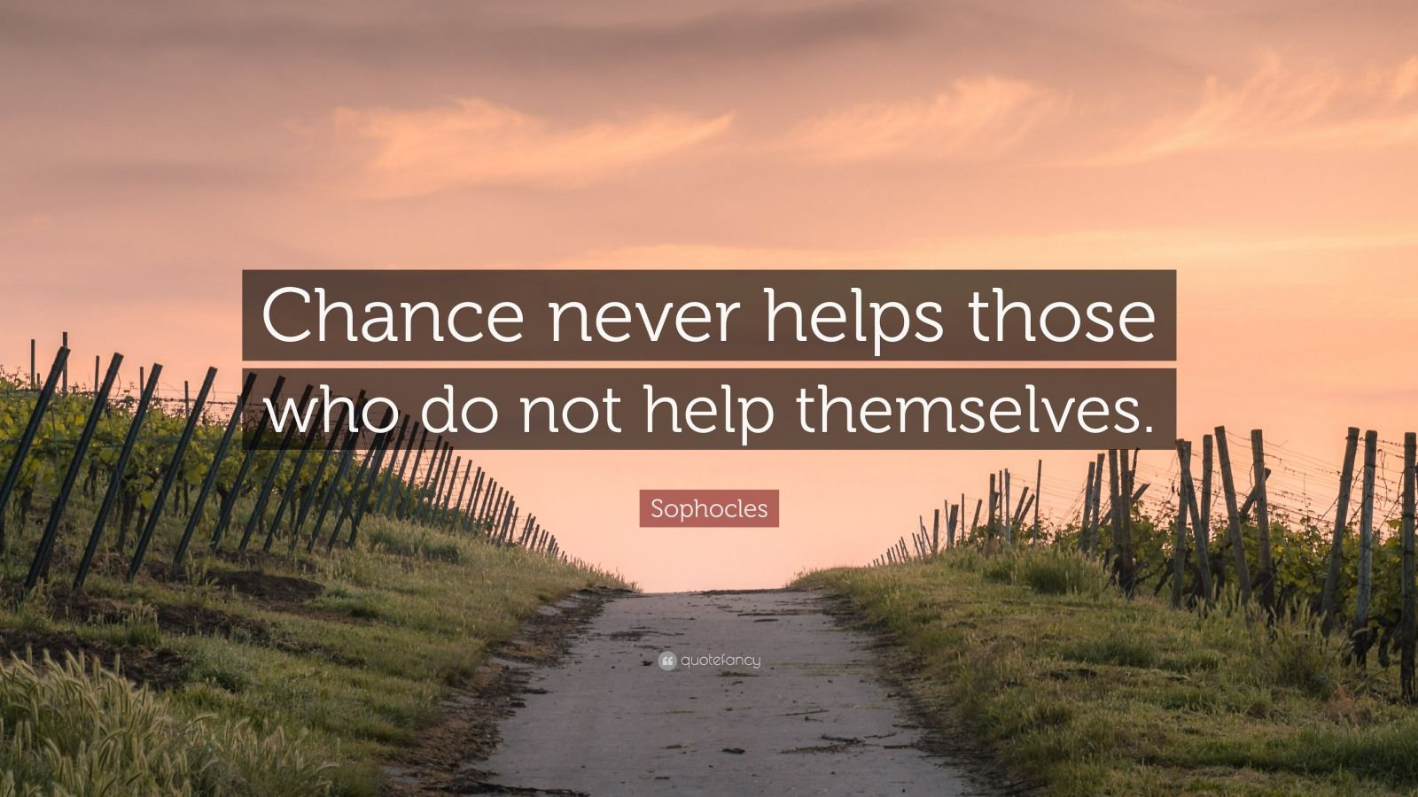 """Sophocles Quote: """"Chance never helps those who do not help themselves."""""""