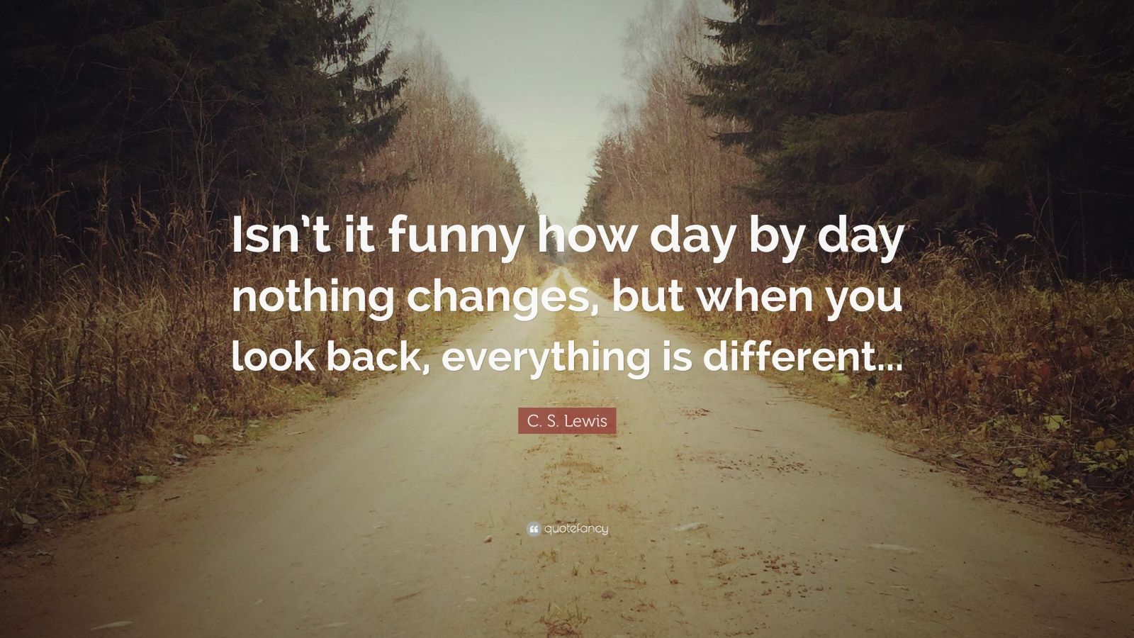 "C. S. Lewis Quote: ""Isn't it funny how day by day nothing changes, but when you look back, everything is different..."""