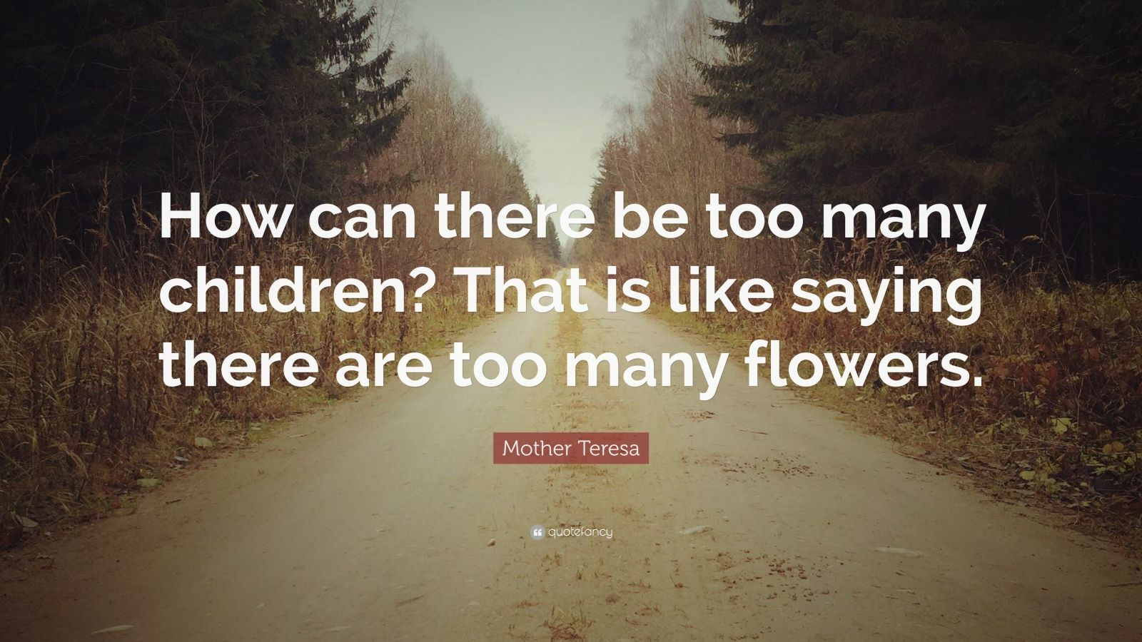 "Mother Teresa Quote: ""How can there be too many children? That is like saying there are too many flowers."""