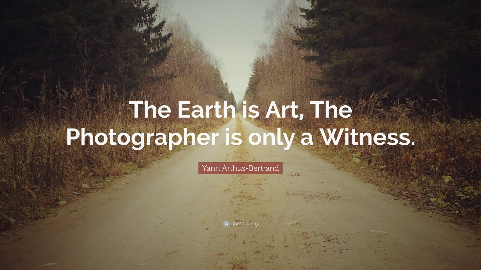 """Yann Arthus-Bertrand Quote: """"The Earth is Art, The Photographer is only a Witness."""""""
