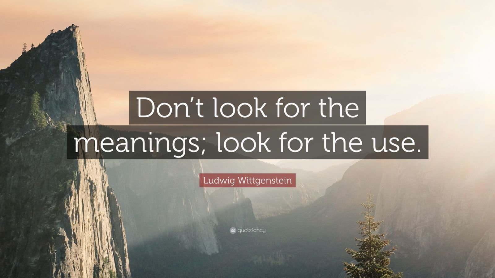 "Ludwig Wittgenstein Quote: ""Don't look for the meanings; look for the use."""