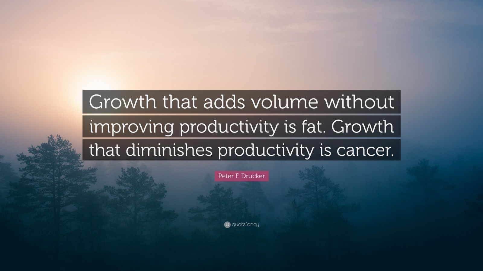 "Peter F. Drucker Quote: ""Growth that adds volume without improving productivity is fat. Growth that diminishes productivity is cancer."""