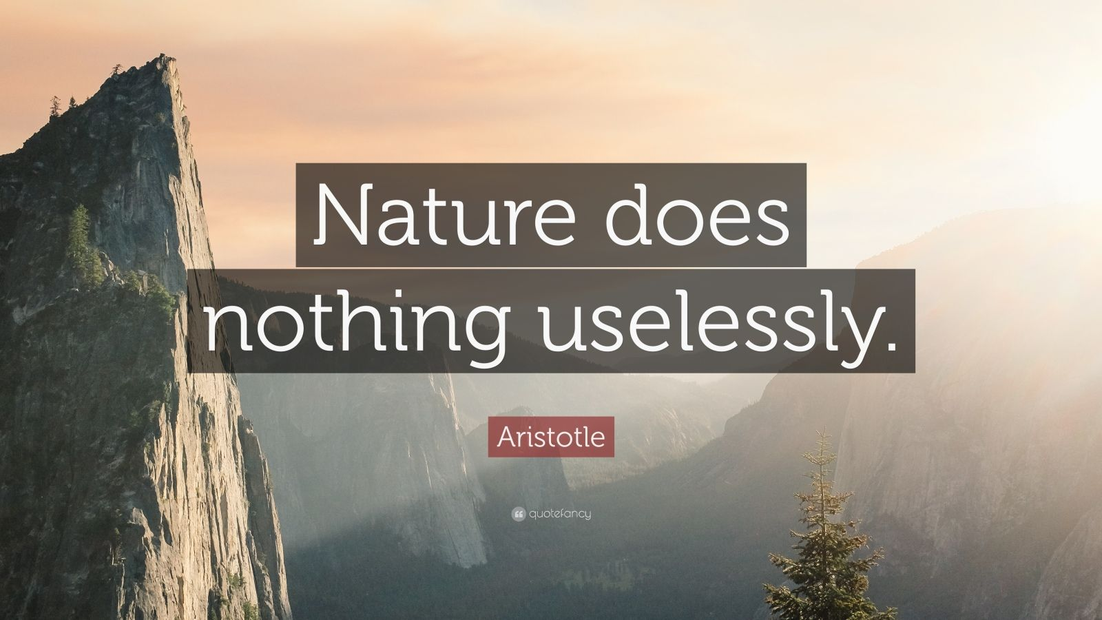"Aristotle Quote: ""Nature does nothing uselessly."""
