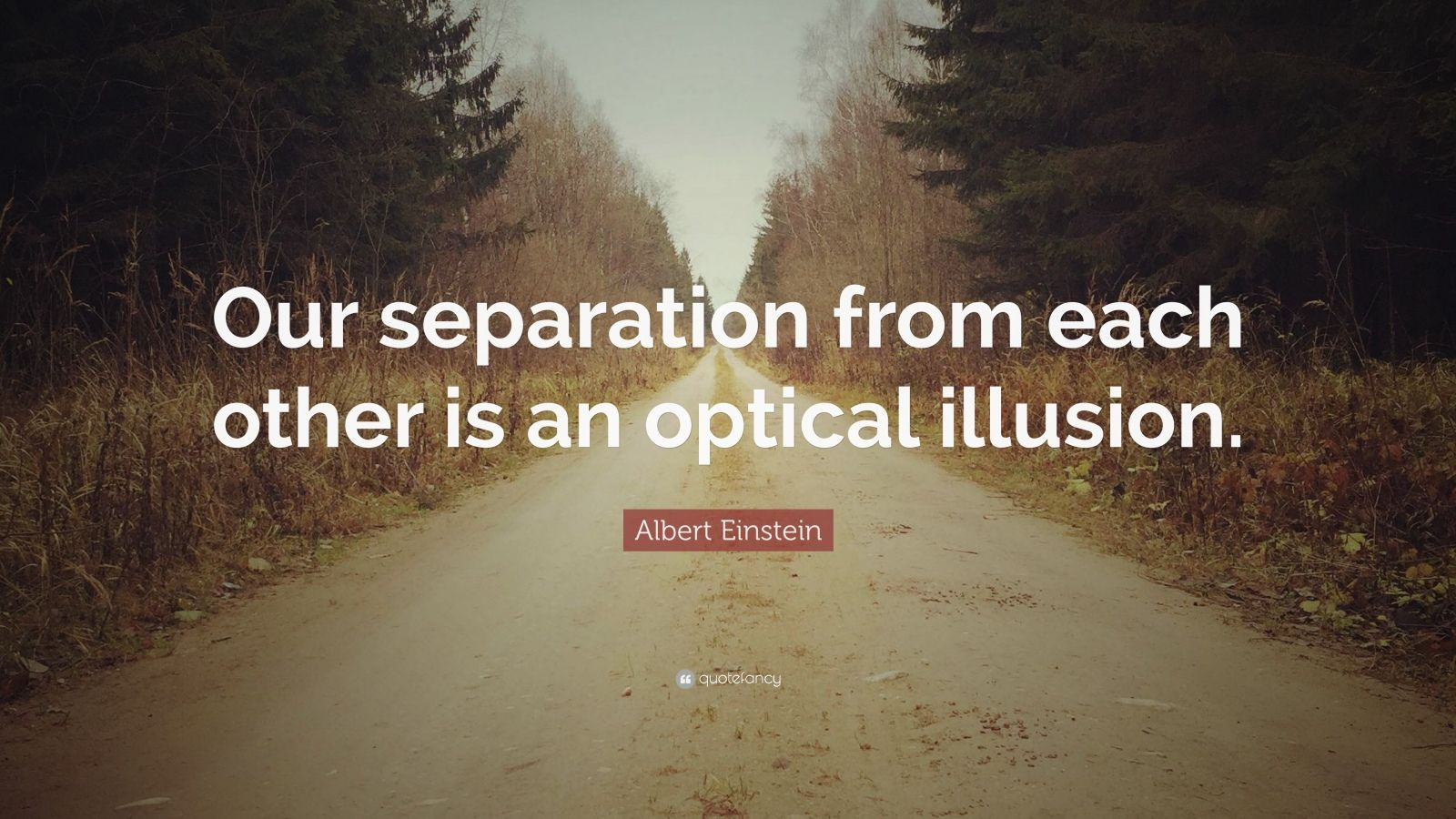 """Albert Einstein Quote: """"Our separation from each other is an optical illusion."""""""