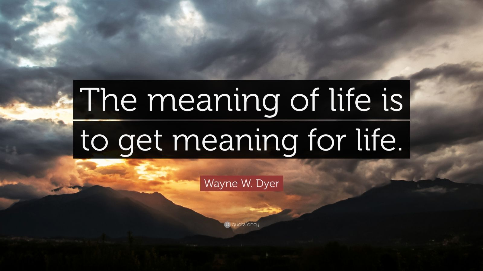 "Wayne W. Dyer Quote: ""The meaning of life is to get meaning for life."""