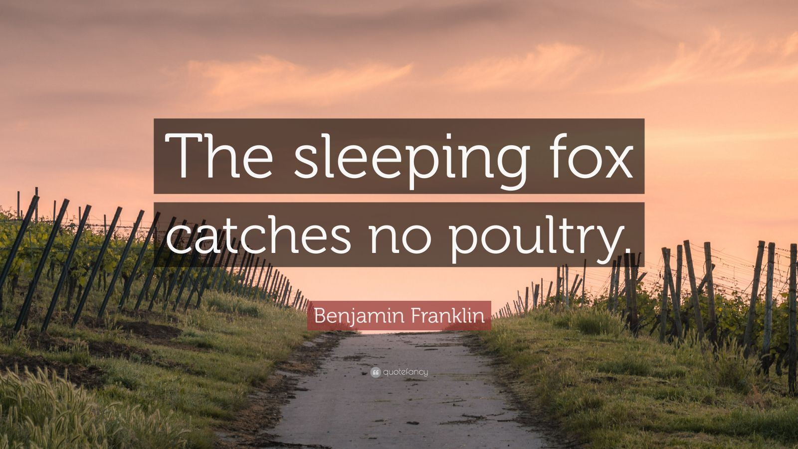 """Benjamin Franklin Quote: """"The sleeping fox catches no poultry."""""""