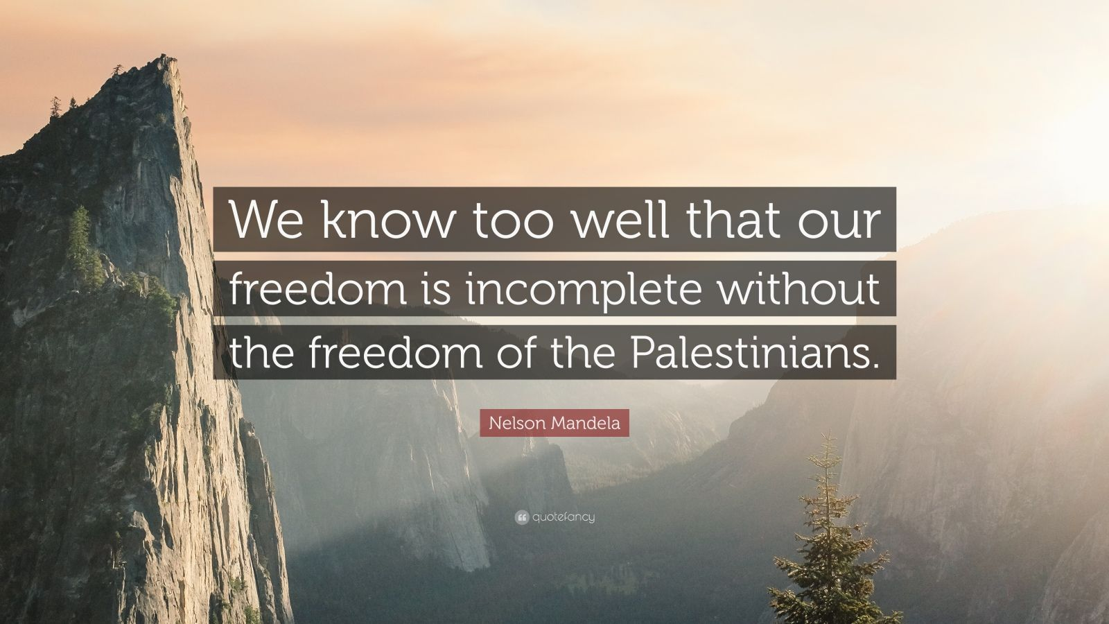 "Nelson Mandela Quote: ""We know too well that our freedom is incomplete without the freedom of the Palestinians."""