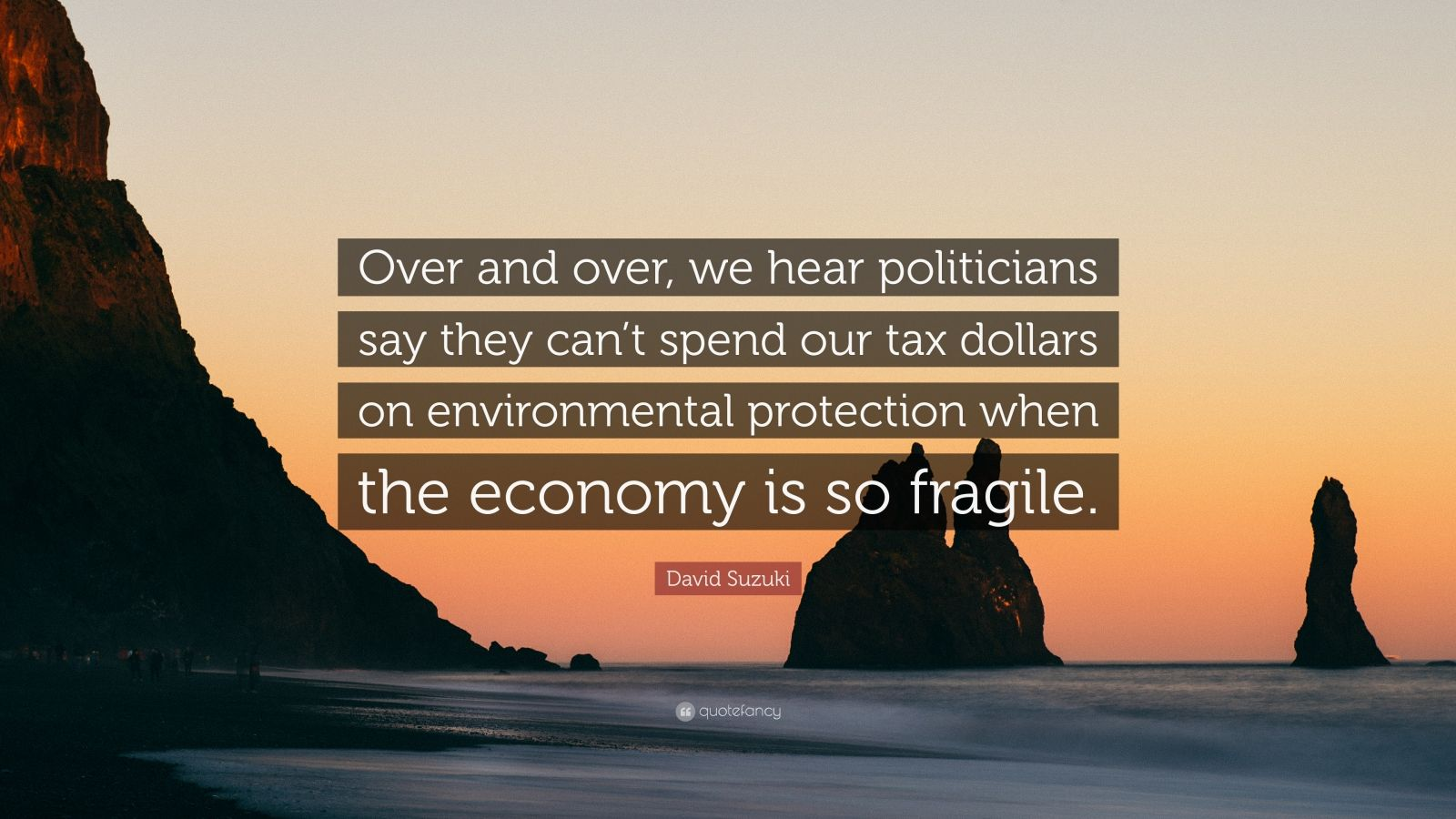 """David Suzuki Quote: """"Over and over, we hear politicians say they can't spend our tax dollars on environmental protection when the economy is so fragile."""""""