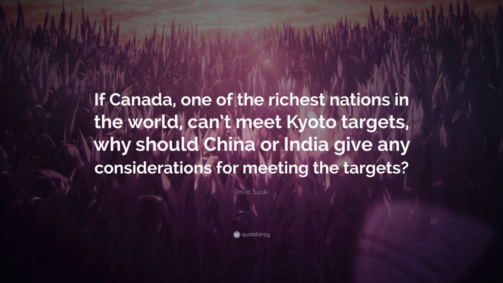 """David Suzuki Quote: """"If Canada, one of the richest nations in the world, can't meet Kyoto targets, why should China or India give any considerations for meeting the targets?"""""""