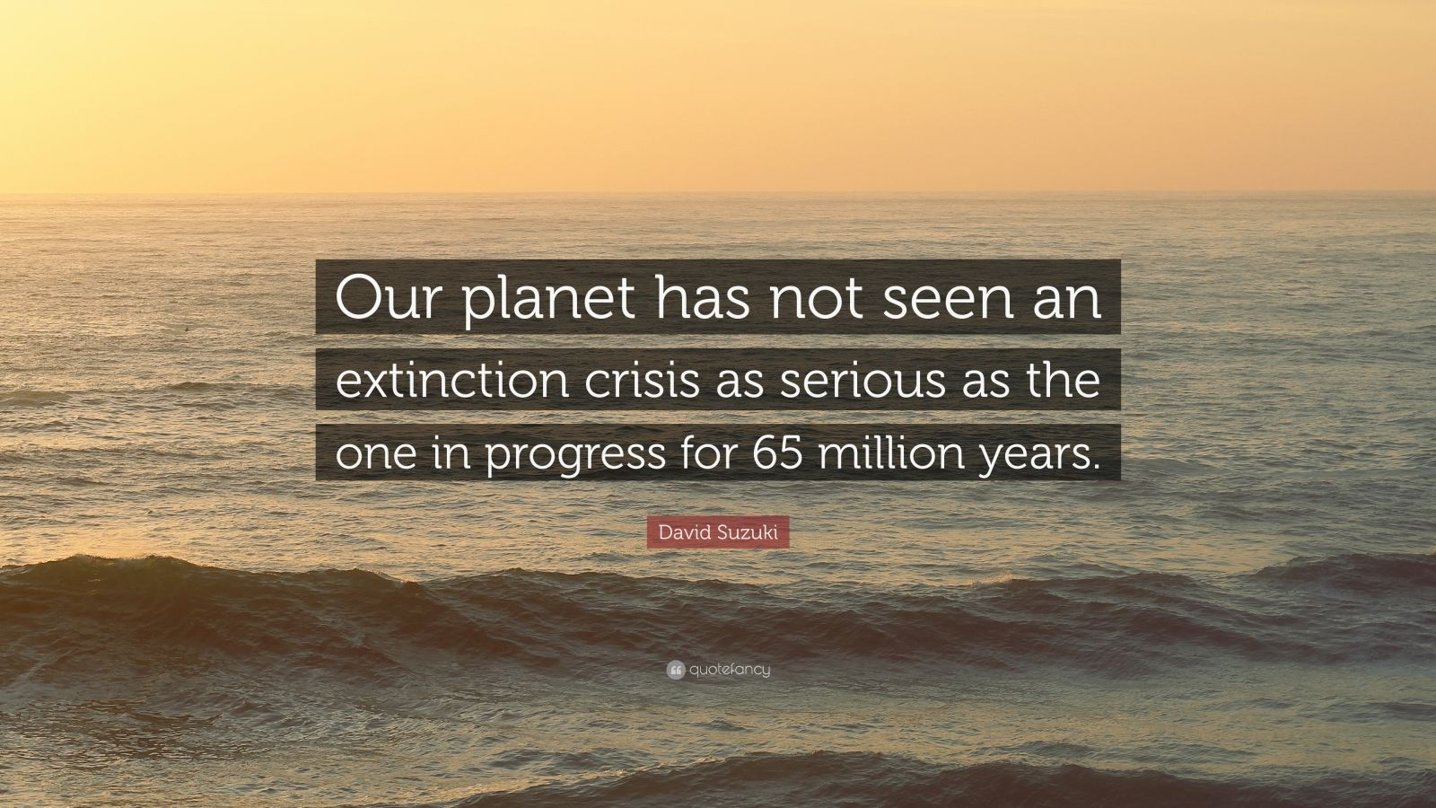 "David Suzuki Quote: ""Our planet has not seen an extinction crisis as serious as the one in progress for 65 million years."""
