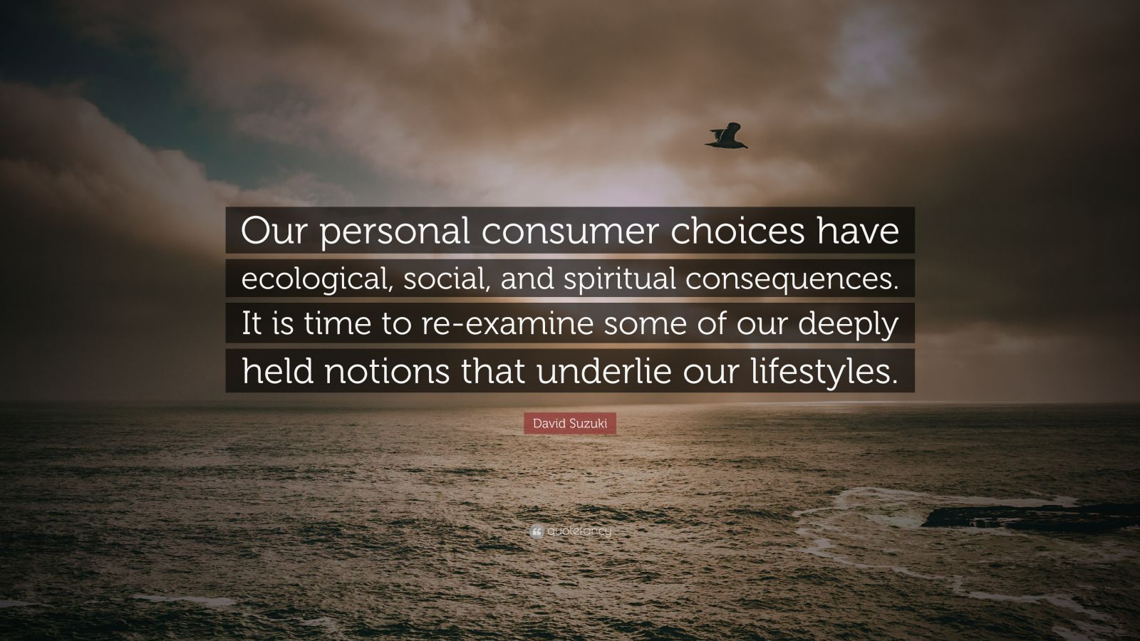"David Suzuki Quote: ""Our personal consumer choices have ecological, social, and spiritual consequences. It is time to re-examine some of our deeply held notions that underlie our lifestyles."""