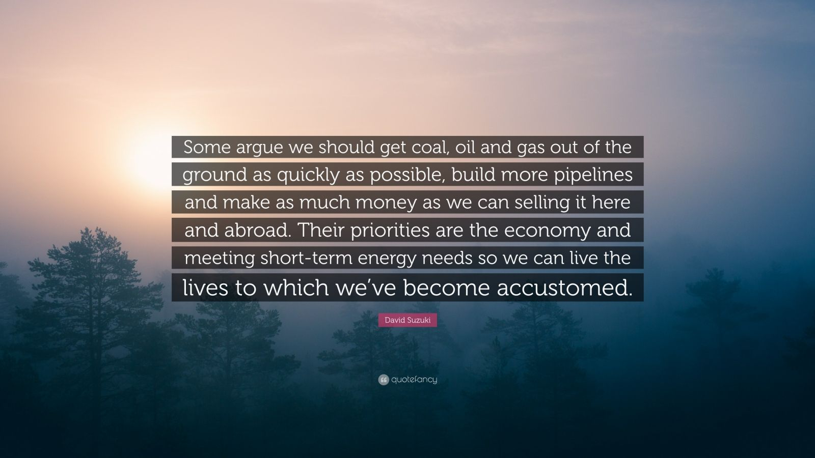 """David Suzuki Quote: """"Some argue we should get coal, oil and gas out of the ground as quickly as possible, build more pipelines and make as much money as we can selling it here and abroad. Their priorities are the economy and meeting short-term energy needs so we can live the lives to which we've become accustomed."""""""