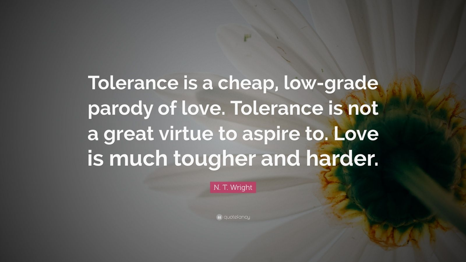 """N. T. Wright Quote: """"Tolerance is a cheap, low-grade parody of love. Tolerance is not a great virtue to aspire to. Love is much tougher and harder."""""""
