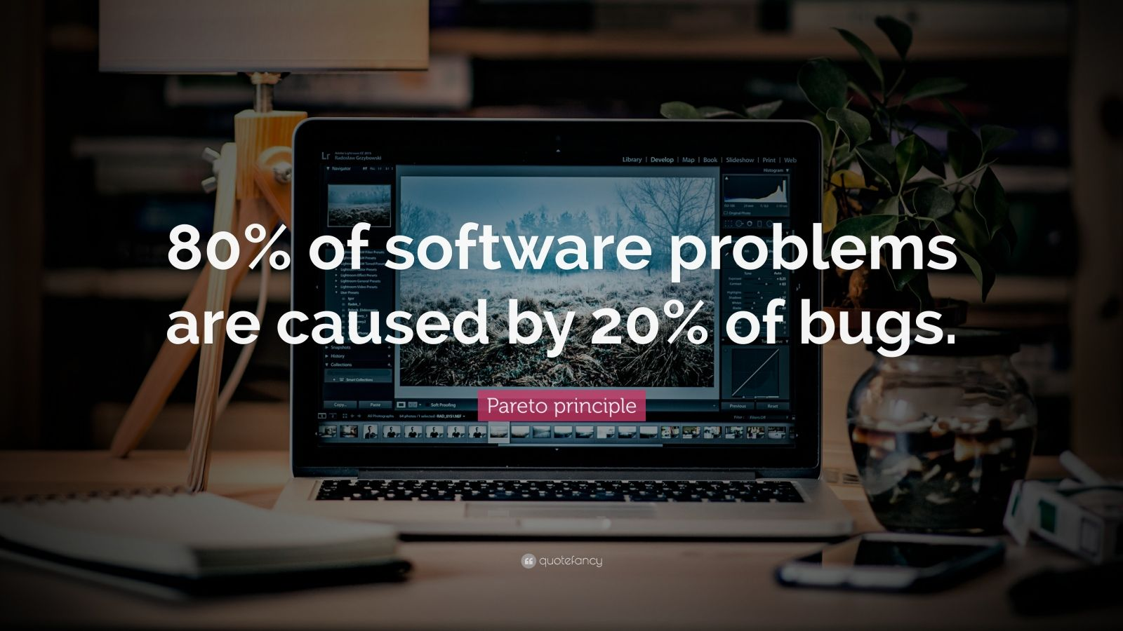 "Pareto principle Quote: ""80% of software problems are caused by 20% of bugs."""