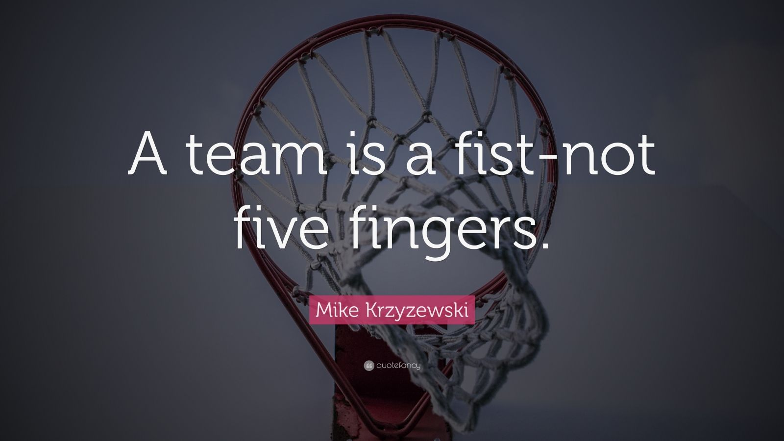 """Mike Krzyzewski Quote: """"A team is a fist-not five fingers."""""""