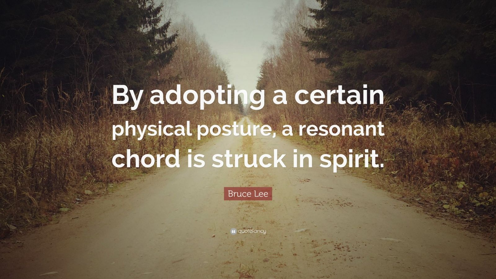 """Bruce Lee Quote: """"By adopting a certain physical posture, a resonant chord is struck in spirit."""""""