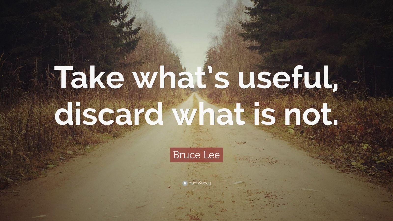 "Bruce Lee Quote: ""Take what's useful, discard what is not."""