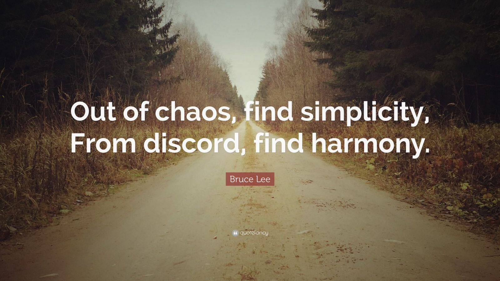 "Bruce Lee Quote: ""Out of chaos, find simplicity, From discord, find harmony."""