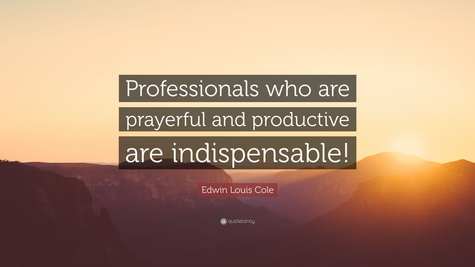 "Edwin Louis Cole Quote: ""Professionals who are prayerful and productive are indispensable!"""