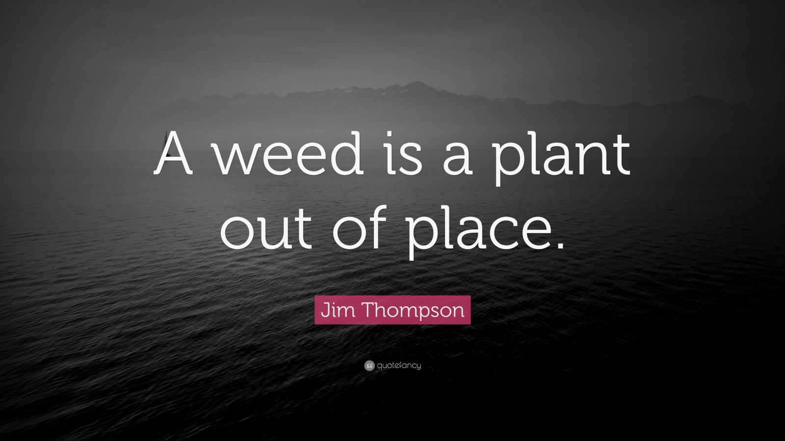 """Jim Thompson Quote: """"A weed is a plant out of place."""""""