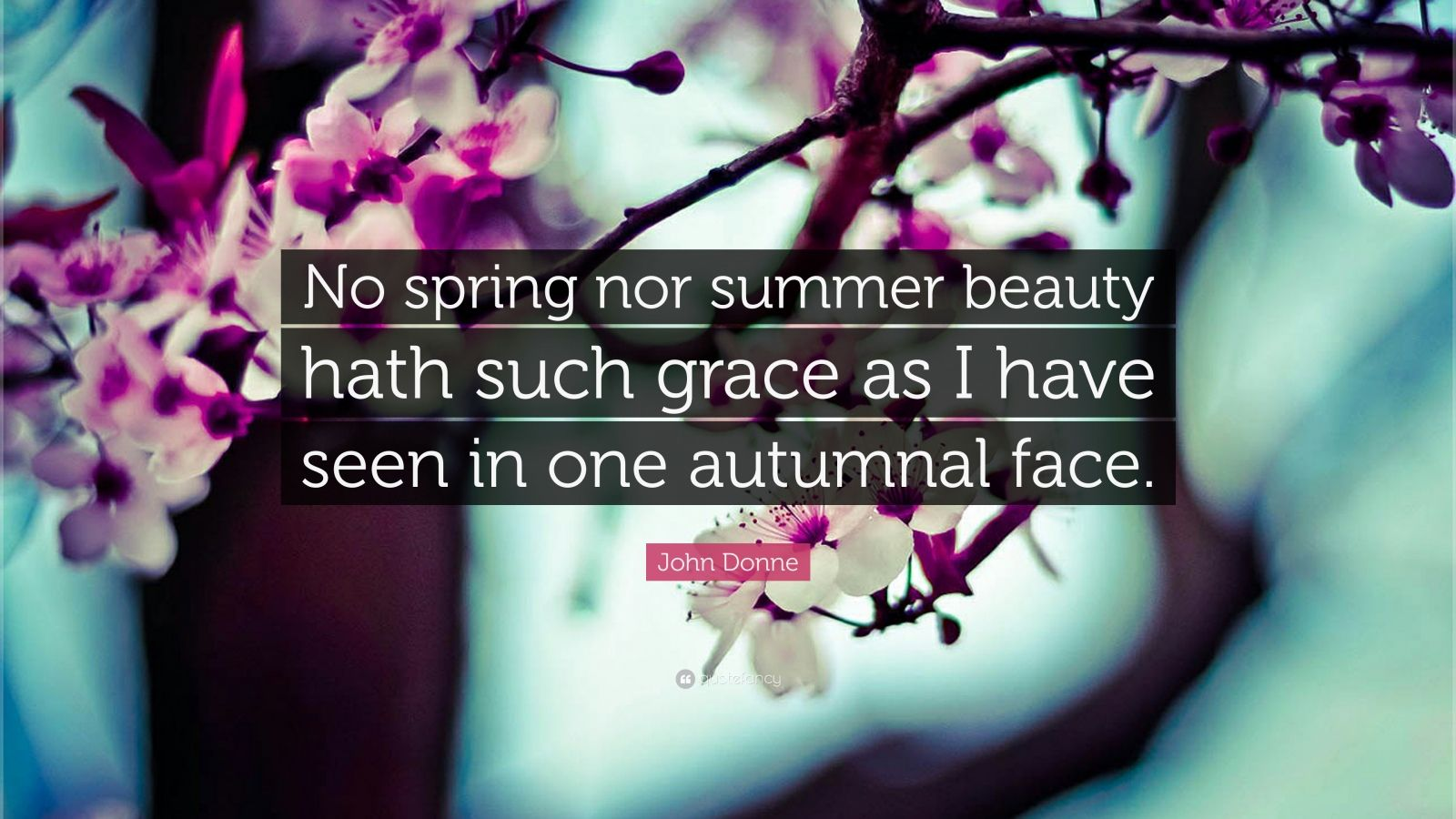 "John Donne Quote: ""No spring nor summer beauty hath such grace as I have seen in one autumnal face."""