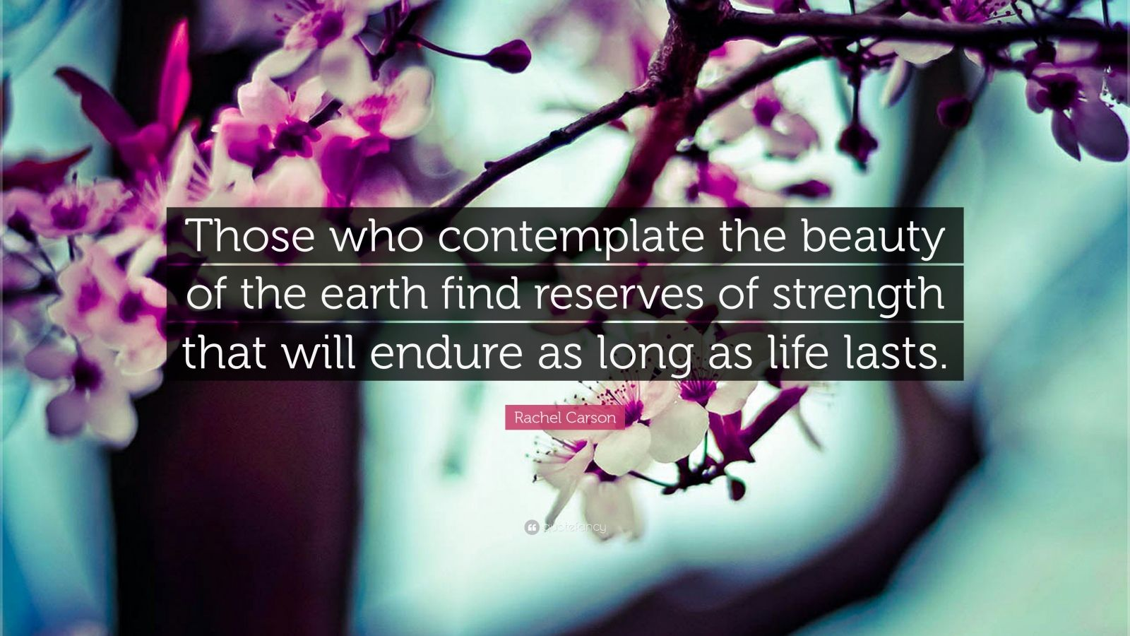 "Rachel Carson Quote: ""Those who contemplate the beauty of the earth find reserves of strength that will endure as long as life lasts."""