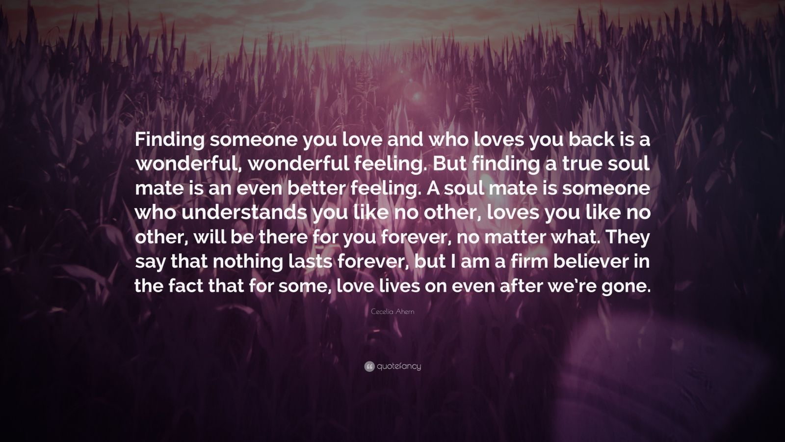 "Finding Someone Better Quotes: Cecelia Ahern Quote: ""Finding Someone You Love And Who"