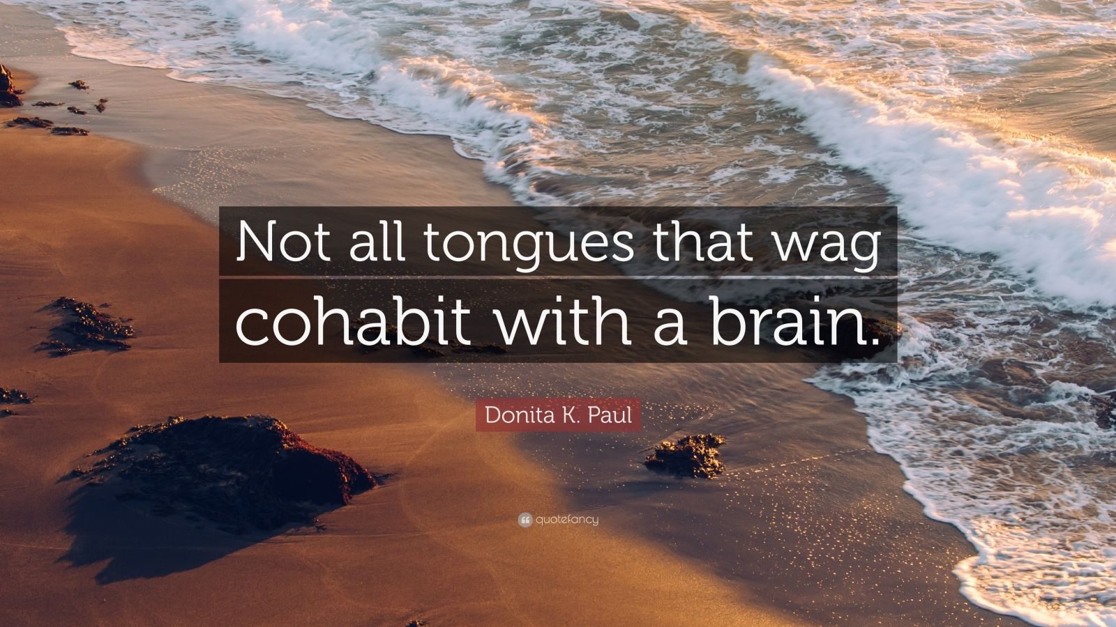 """Donita K. Paul Quote: """"Not all tongues that wag cohabit with a brain."""""""