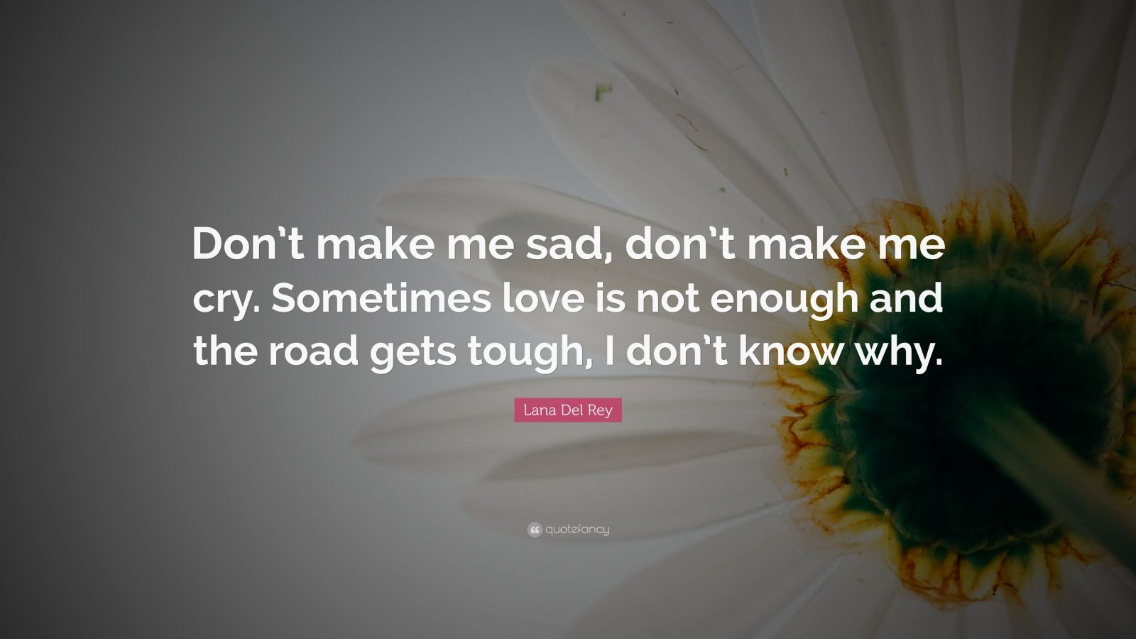 """Lana Del Rey Quote: """"Don't make me sad, don't make me cry. Sometimes love is not enough and the road gets tough, I don't know why."""""""