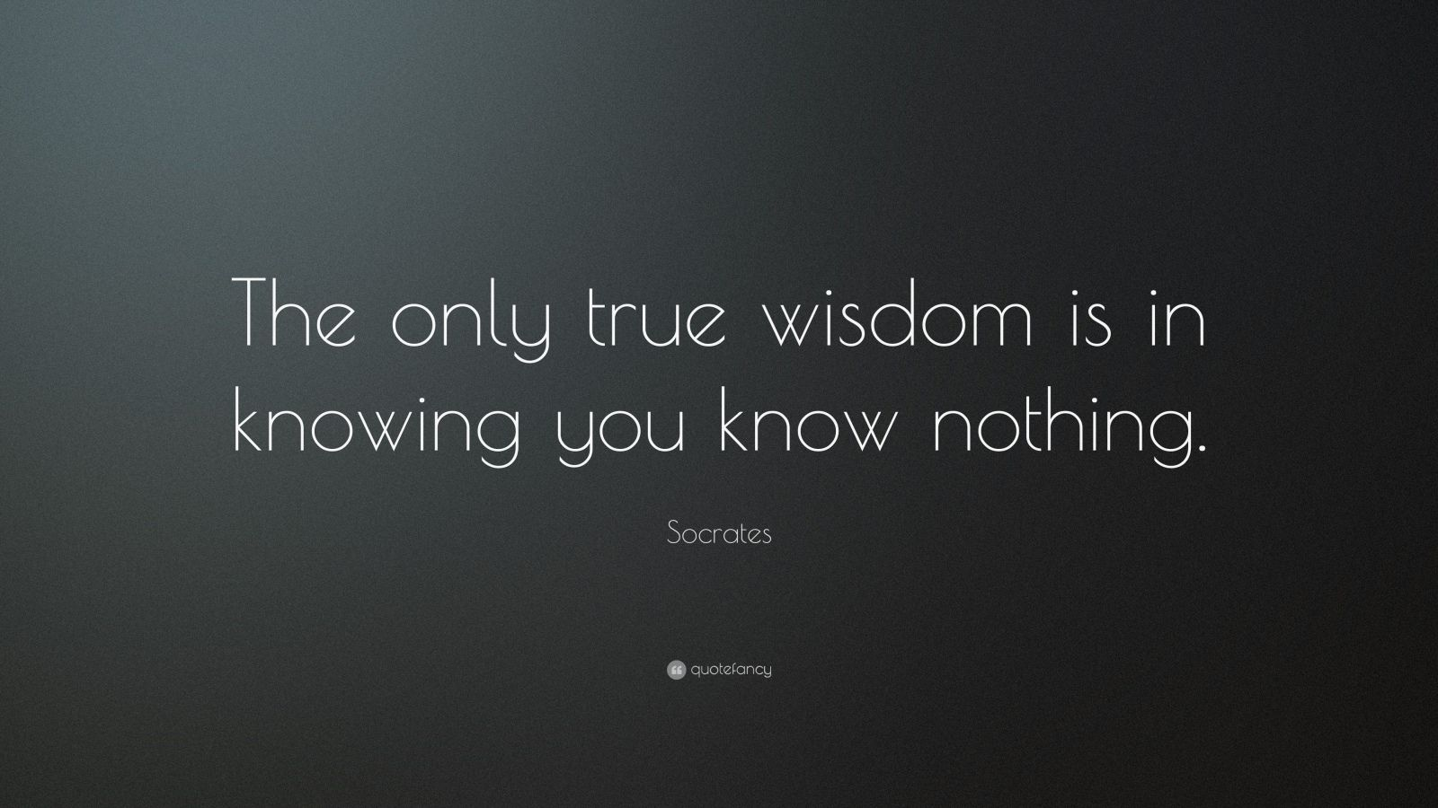 """Wisdom Quotes: """"The only true wisdom is in knowing you know nothing."""" — Socrates"""
