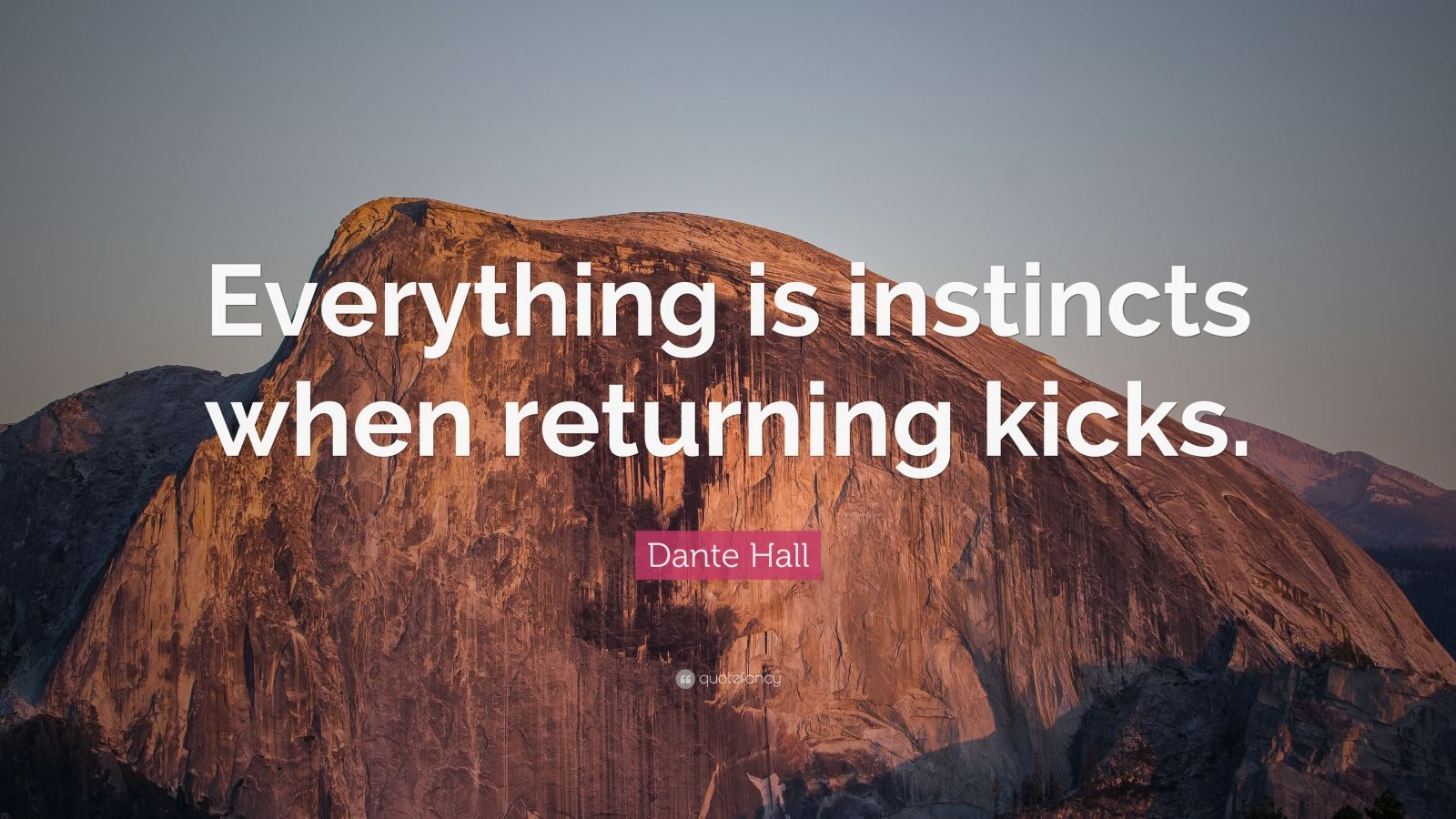 """Dante Hall Quote: """"Everything is instincts when returning kicks."""""""