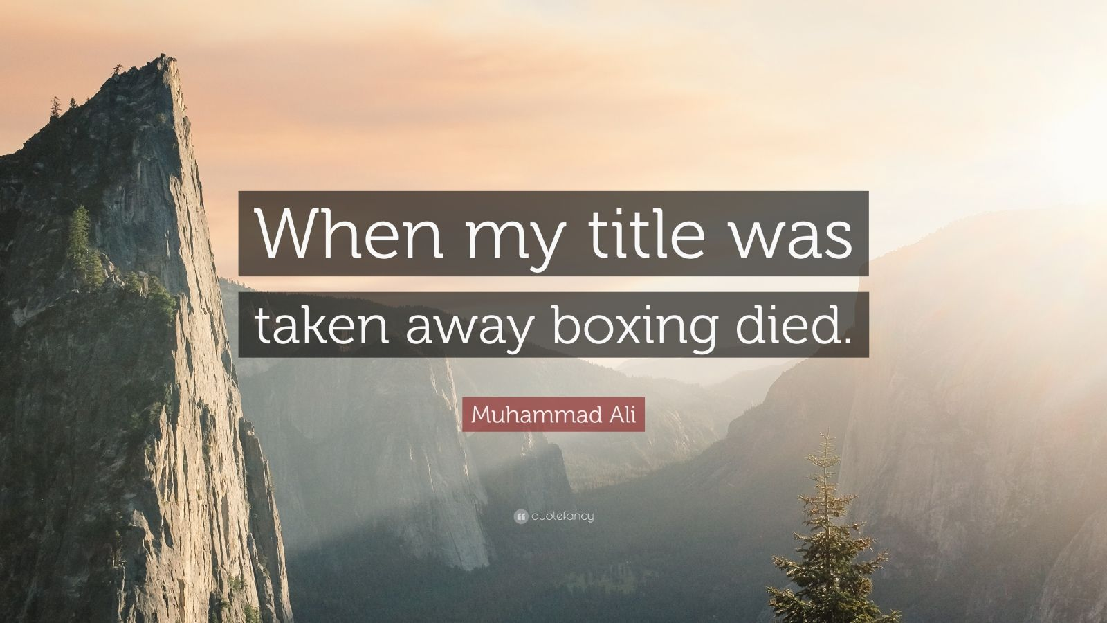 "Muhammad Ali Quote: ""When my title was taken away boxing died."""