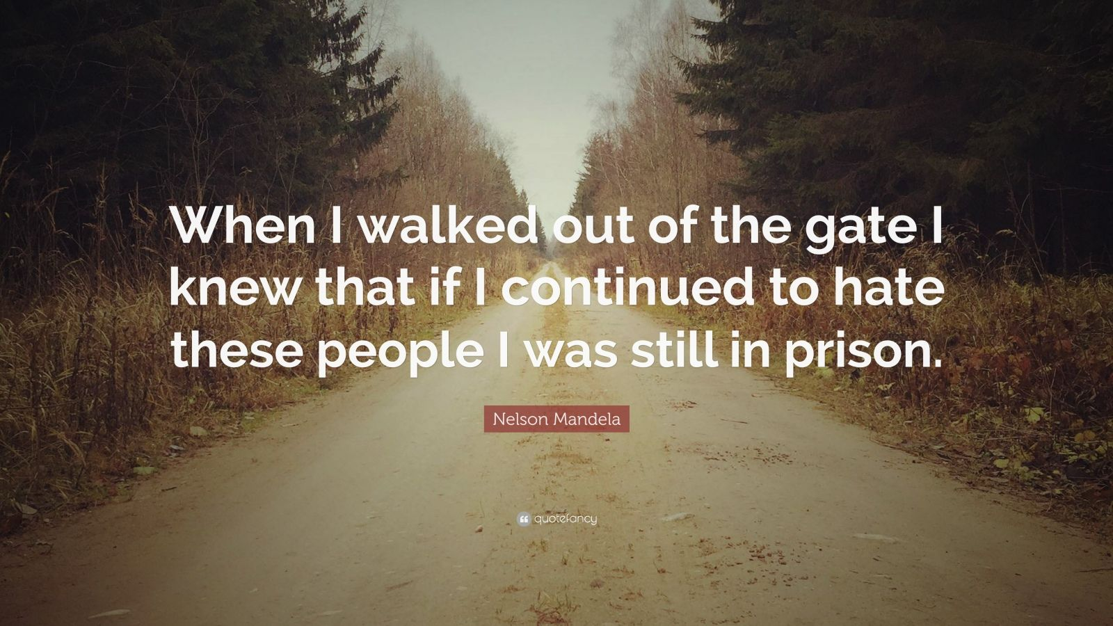 "Nelson Mandela Quote: ""When I walked out of the gate I knew that if I continued to hate these people I was still in prison."""