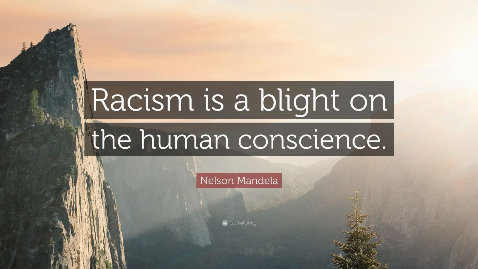 "Nelson Mandela Quote: ""Racism is a blight on the human conscience."""