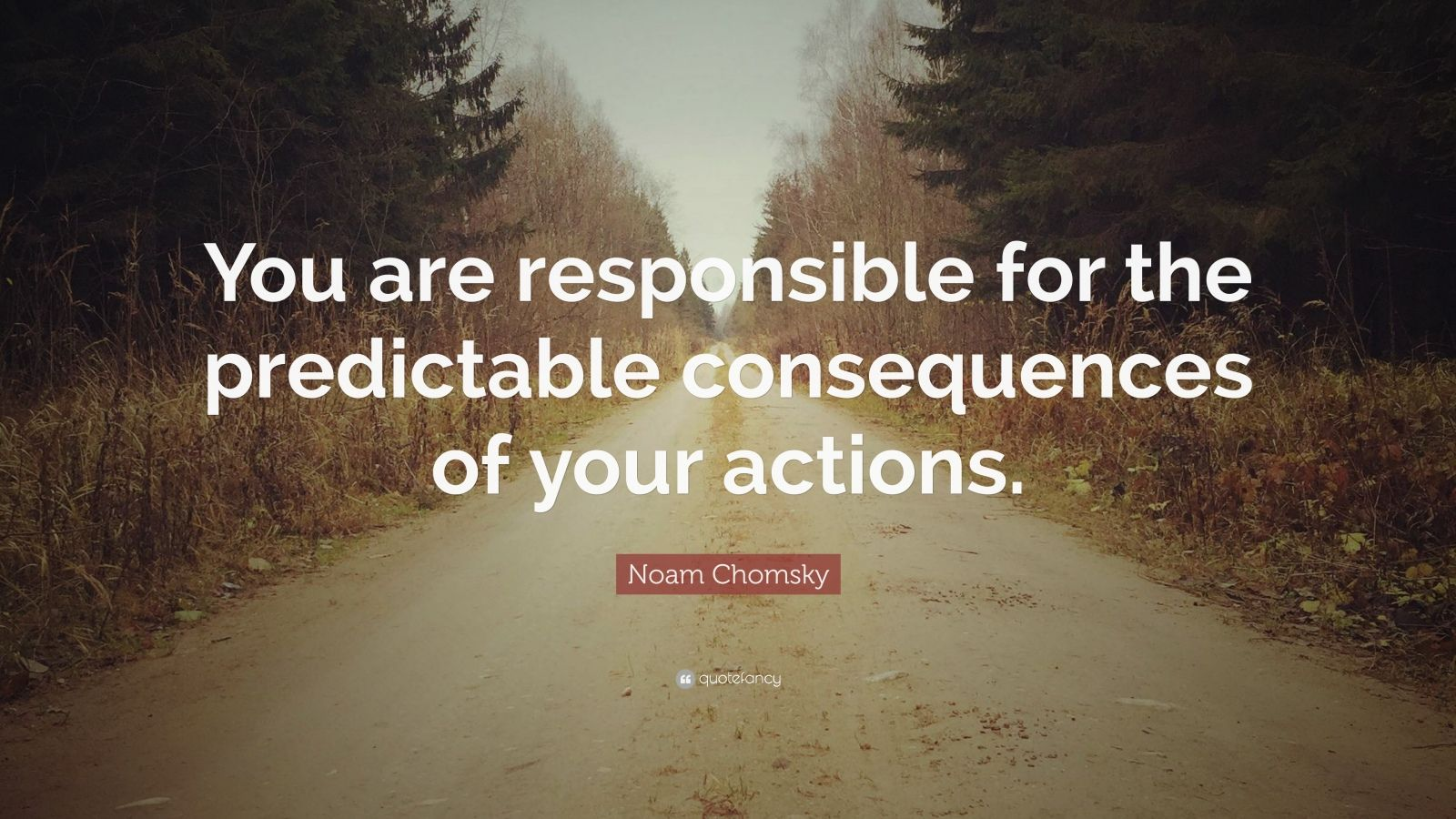 """Noam Chomsky Quote: """"You are responsible for the predictable consequences of your actions."""""""