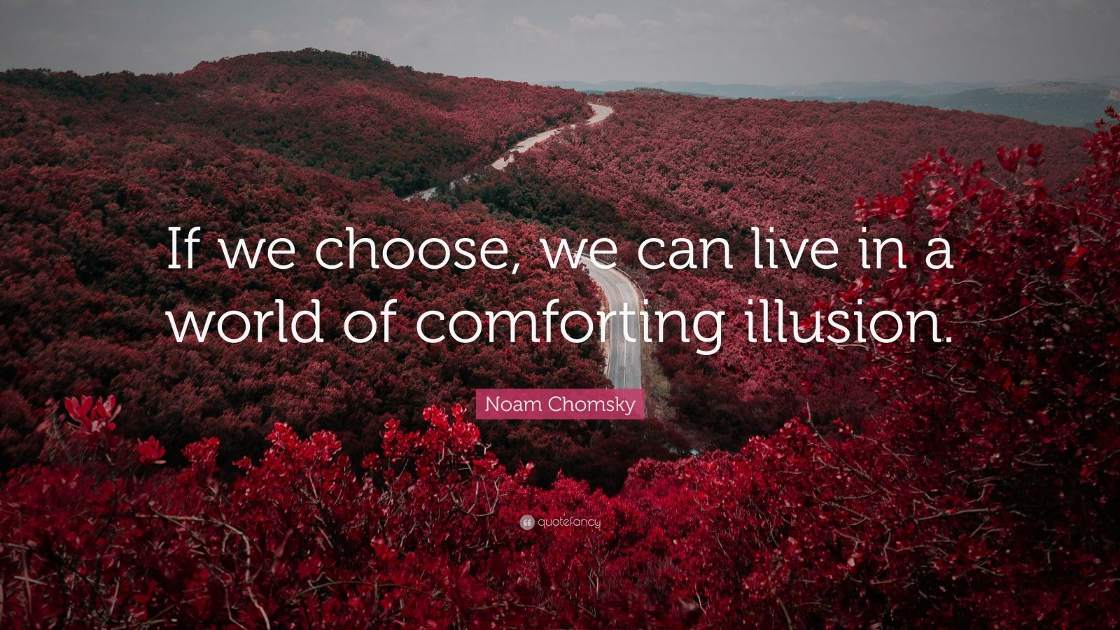 "Noam Chomsky Quote: ""If we choose, we can live in a world of comforting illusion."""