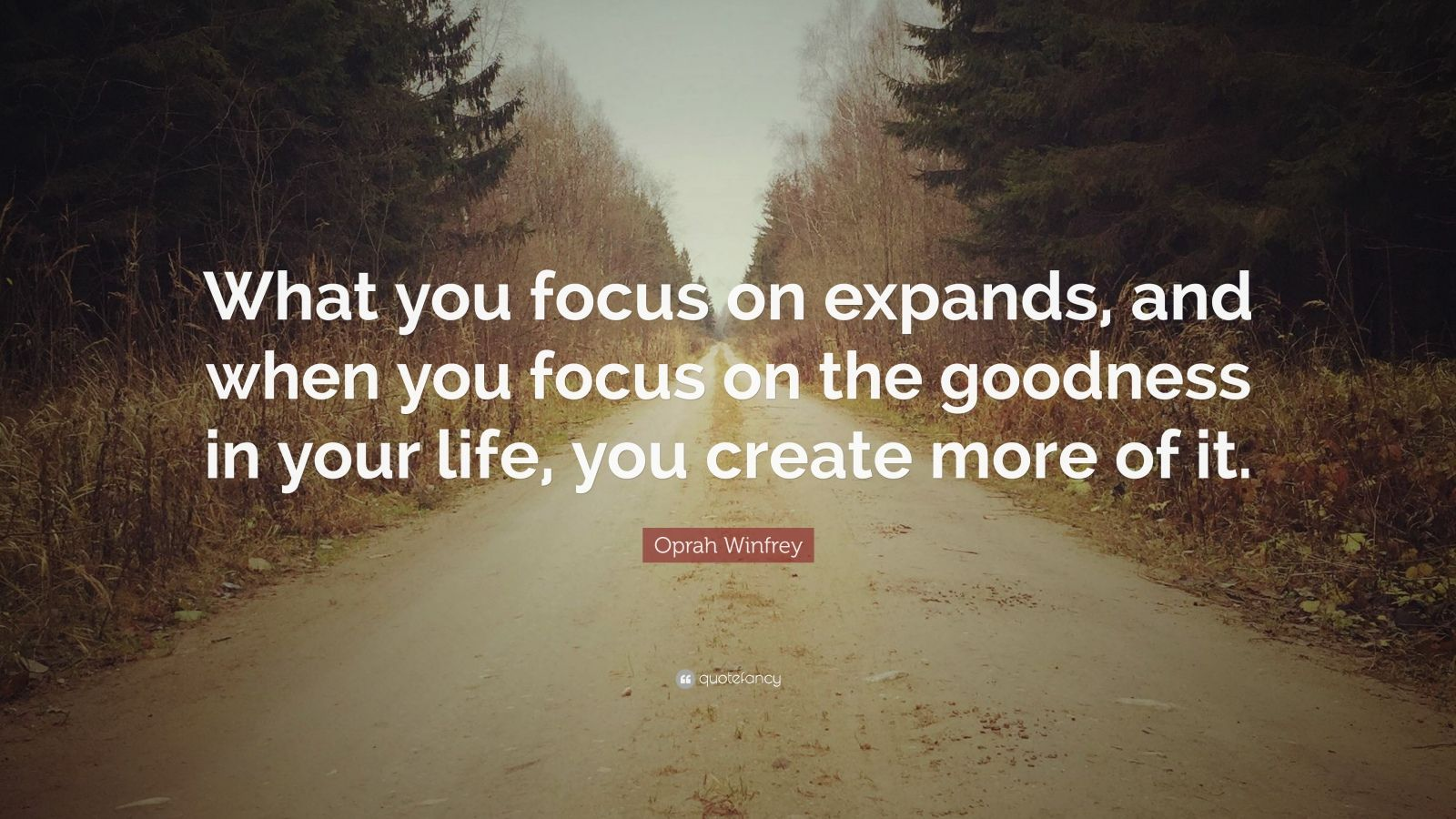 """Oprah Winfrey Quote: """"What you focus on expands, and when you focus on the goodness in your life, you create more of it."""""""