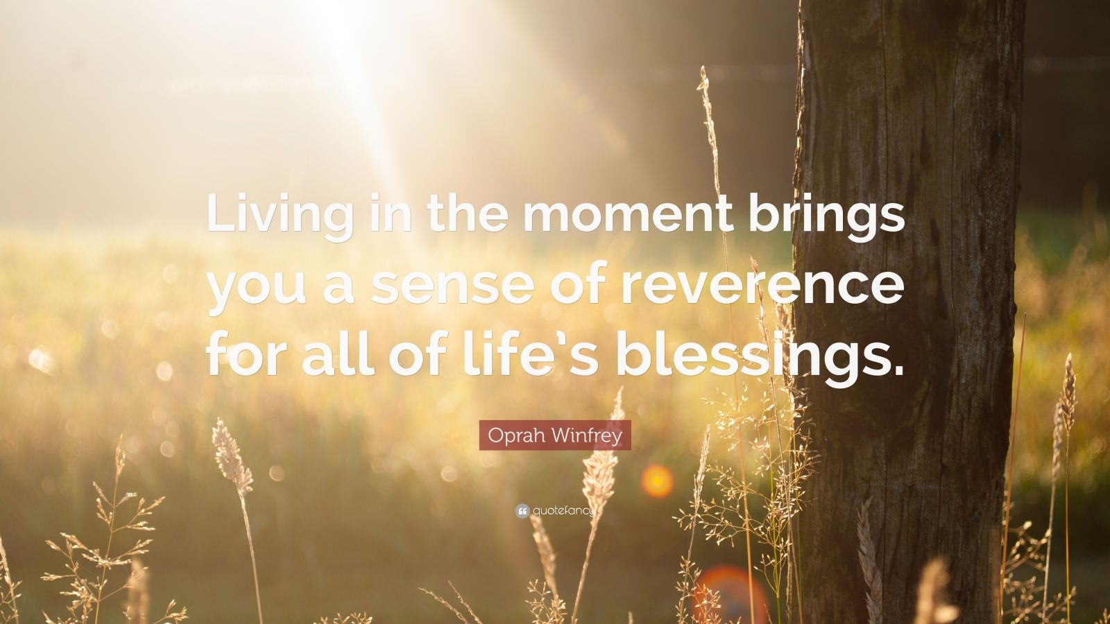 """Oprah Winfrey Quote: """"Living in the moment brings you a sense of reverence for all of life's blessings."""""""