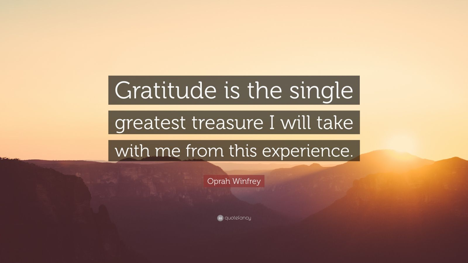 """Oprah Winfrey Quote: """"Gratitude is the single greatest treasure I will take with me from this experience."""""""