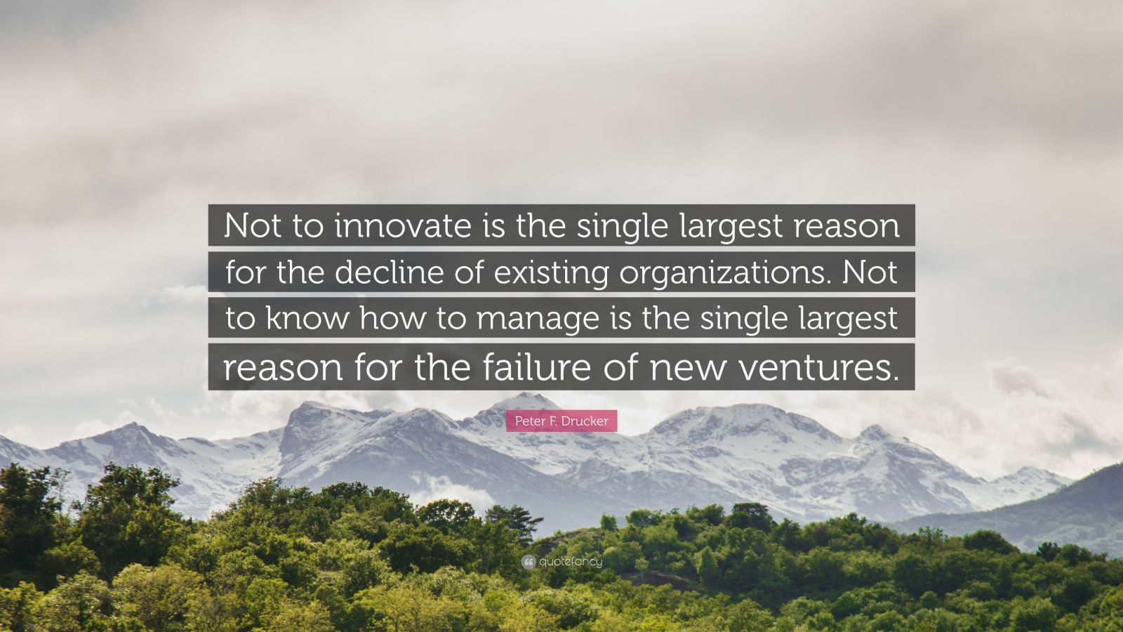 """Peter F. Drucker Quote: """"Not to innovate is the single largest reason for the decline of existing organizations. Not to know how to manage is the single largest reason for the failure of new ventures."""""""