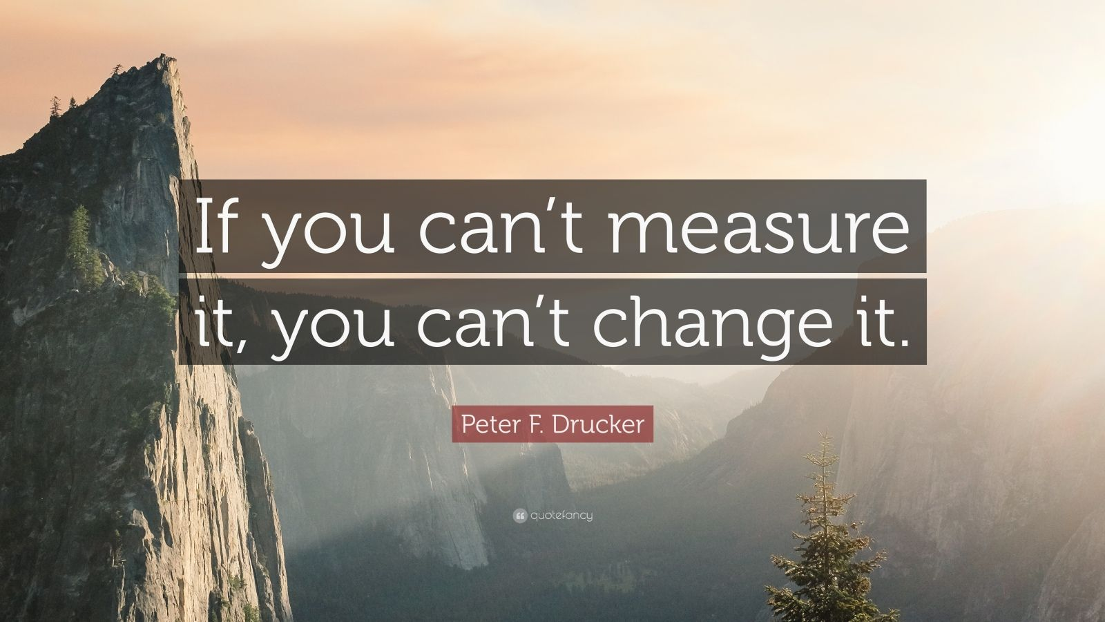"""Peter F. Drucker Quote: """"If you can't measure it, you can't change it."""""""